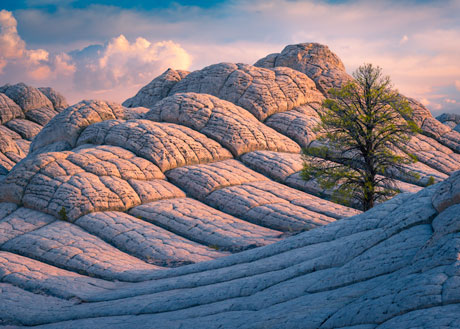 Red Rock Country Photo Tour
