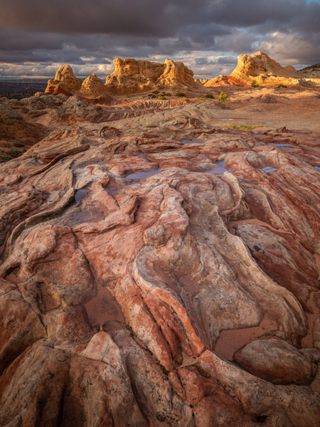 White Pocket, Photography Tours and Workshops
