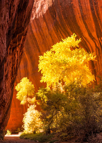 Neon Canyon, Glen Canyon National Recreational Area, Utah