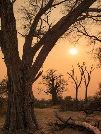 Namibia Photo Tour