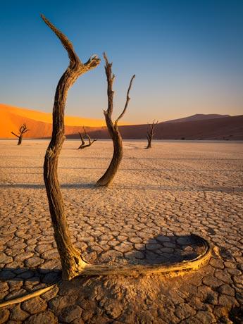 Deadvlei, Namibia Tour