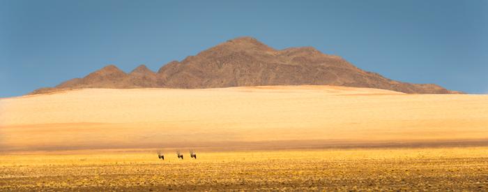 Namibia Photo Tour 2022