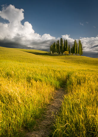 Tuscany Photography Workshop